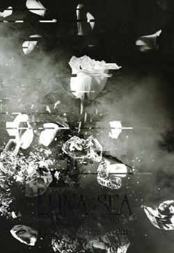 LUNA SEA LIVE TOUR2012-2013 12年1月表紙.jpg